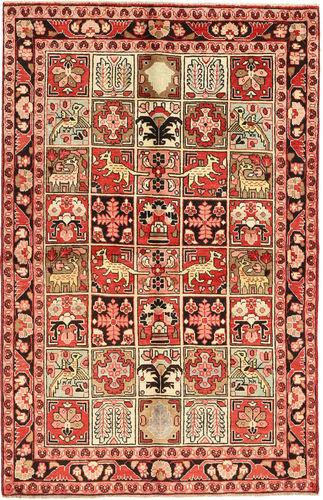 Sarouk carpet AXVZL4643