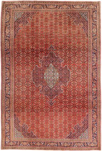 Bidjar carpet AXVZZH13