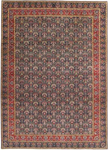 Tabriz 50 Raj carpet AXVZZH136