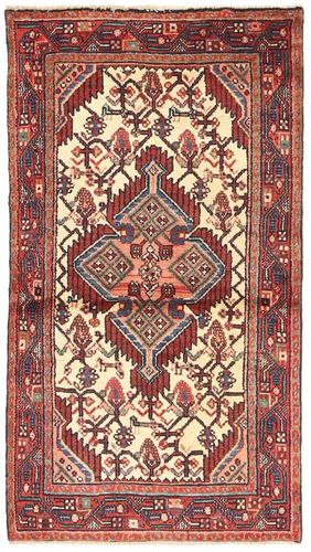 Hamadan carpet AXVZZX2142