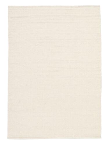 Kilim Loom rug CVD16841