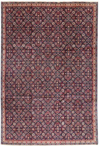 Arak carpet AXVZZZF21