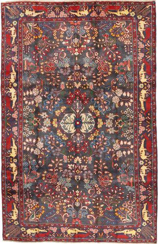 Koliai carpet AXVZZZF1166