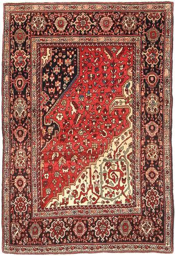 Bidjar carpet AXVZZZO744