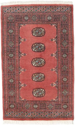 Pakistan Bokhara 2ply carpet RXZN243