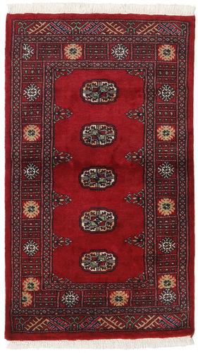 Pakistan Bokhara 2ply carpet RXZN226