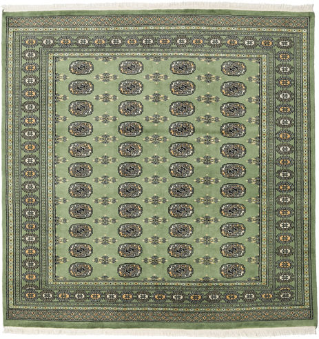 Pakistan Bokhara 2ply carpet RXZN484