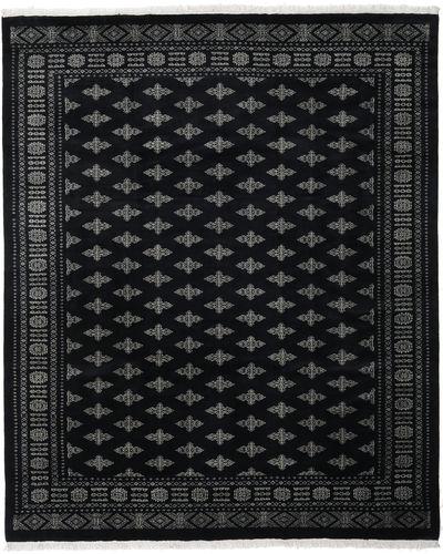 パキスタン ブハラ 3ply 絨毯 RXZN136